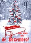 Dezembro Inverno:2