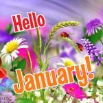 January. Summer:0
