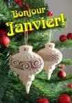 Janvier Hiver:6