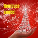 Bonne année!:5