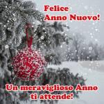 Buon Anno Nuovo:8