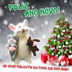 Feliz Ano Novo!:11