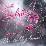 Februar:1