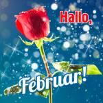 Februar:4