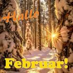 Februar:8