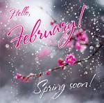 February. Winter:1