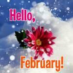 February. Winter:2