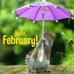 February. Summer:0