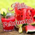 February. Summer:1