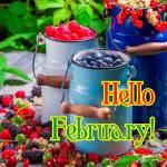 February. Summer:3