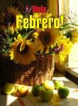 Febrero Verano:6