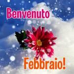 Febbraio:2