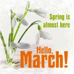 March:8
