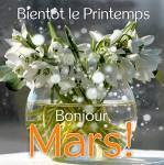 Mars:0