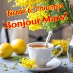 Mars:7