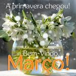 Março:0