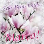 Março:6