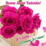 Saint Valentin:35