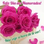 Dia dos Namorados (Dia de São Valentim):14