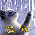 April:0