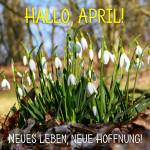 April:7
