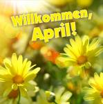 April:11