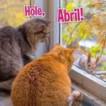Abril Otoño:11