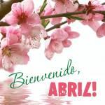 Abril Primavera:4