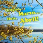 Abril Primavera:5