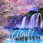 Abril Primavera:6