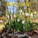 Abril Primavera:7