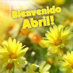 Abril Primavera:11