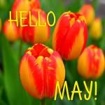 May:2