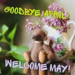 May:3