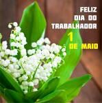 Dia do Trabalhador (1 de maio):8