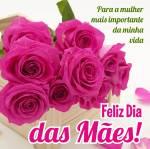 Dia das Mães:3
