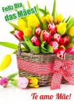 Dia das Mães:7