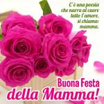 Festa della Mamma:3