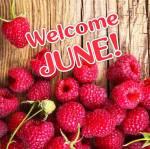 June:2