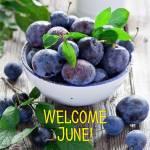 June:4