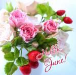 June:5