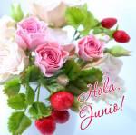 Junio:5
