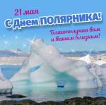 День полярника:4