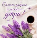 Доброе утро!:158