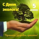 День окружающей среды (День эколога):12