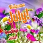 July:0