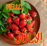 July:1