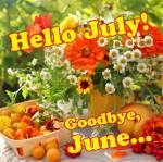 July:7