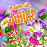 Julio:0