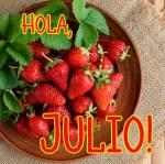 Julio:1